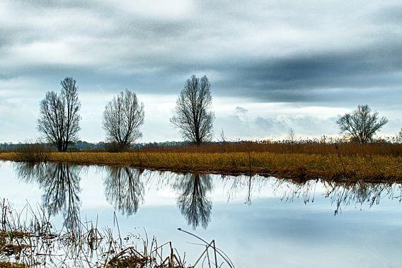 Winter landschap  van Jelte Bosma