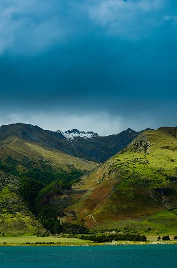 Berglandschap bij Lake Hawea - Nieuw Zeeland van Ricardo Bouman | Fotografie