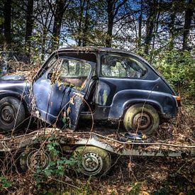 Oldtimer auto Fiat 600 in het bos van Inge van den Brande