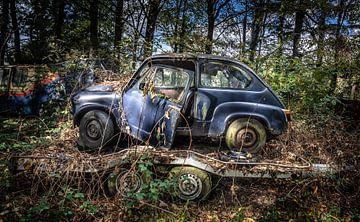 Oldtimer-Auto Fiat 600 im Wald von Inge van den Brande