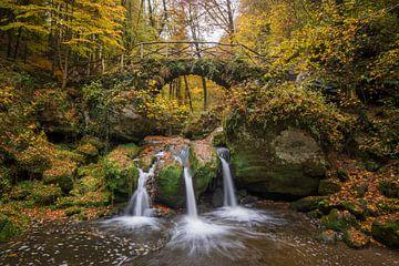 Automne - Cascade - Luxembourg - Mullerthal sur Pixelatestudio Fotografie