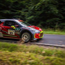Citroën DS3 WRC van 3,14 Photography
