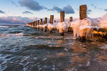 Winter on shore of the Baltic Sea van Rico Ködder