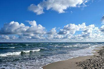 Wellengang von Ostsee Bilder