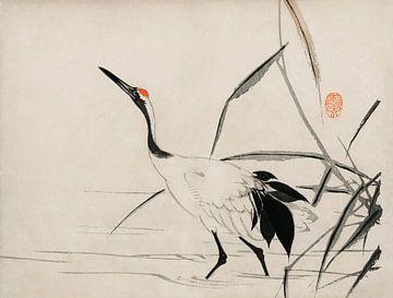 Traditionelles Porträt eines eleganten japanischen Kranichs von Mochizuki Gyokusen von Studio POPPY