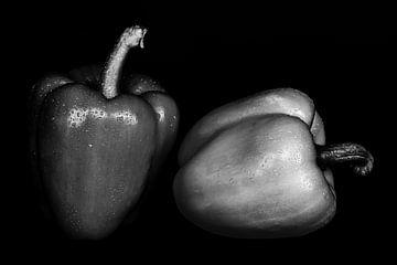 Stillleben zwei Paprika auf schwarz in schwarz-weiss nebeneinander mit Wassertropfen von Dieter Walther