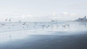 Der Strand von Scheveningen von Marian Sintemaartensdijk