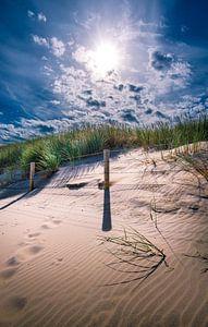 Zon en duinen van Danny den Breejen