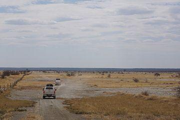 Op weg naar de Makgadikgadi zoutpannen van Job Moerland