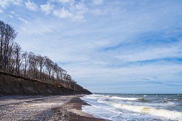 Côte de la mer Baltique à la Forêt Fantôme près de Nienhagen