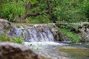 Chute d'eau courante dans les forêts quelque part à l'intérieur de la Slovénie