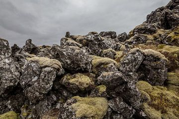 Fiskbyrgi, lava steen in IJsland van Chris Snoek