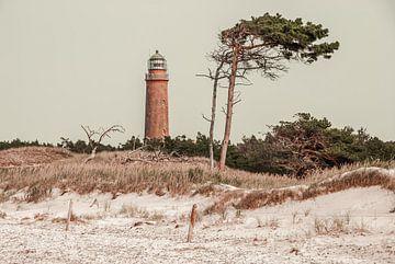 Leuchtturm am Darss von Steffen Gierok
