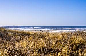 Strand en Duinen van Kijkduin
