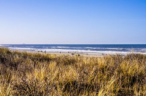 Strand van Kijkduin vanuit de duinen