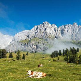 Berglandschap Oostenrijk van Ilya Korzelius
