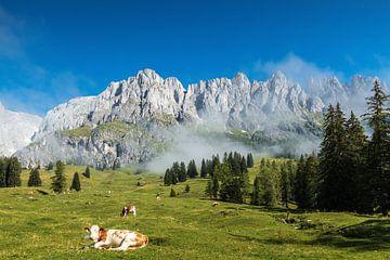 Gebirgslandschaft Österreich von Ilya Korzelius