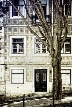 Der Baum van Pascal Deckarm