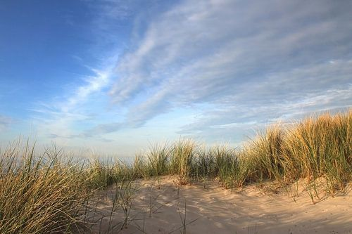 Schattenspiele van Ostsee Bilder