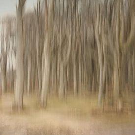 Verwischt Gespensterwald van Heike Hultsch