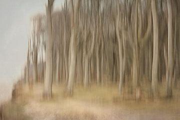 Verwischt Gespensterwald sur Heike Hultsch