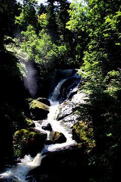 Cascade de Triberg 3 sur Paul Emons