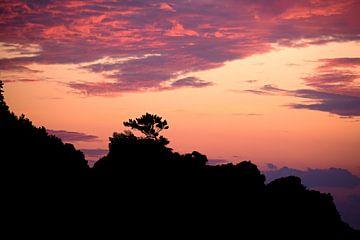 Schöne Silhouette von Myrna's Photography