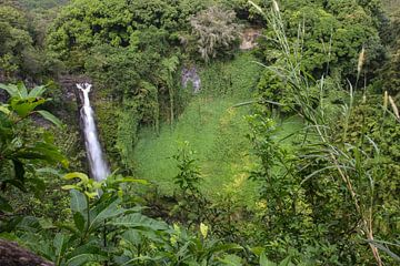 Makahiku Falls Maui sur Louise Poortvliet