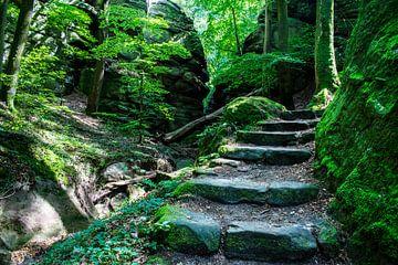 Stenen trap naar sprookjesland, Mullerthal van Monique Pulles