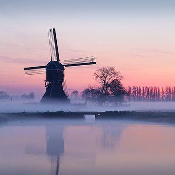Serene morgen in de Alblasserwaard van Halma Fotografie