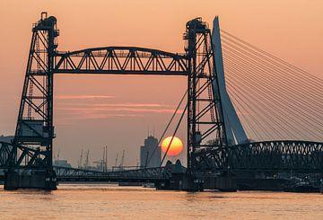 Zonsondergang bij de Hef in Rotterdam van