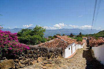 Dorpje in Colombia van Annemarie Winkelhagen
