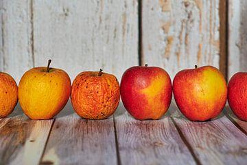 Des pommes posées de façon décorative sur une table au soleil. sur Michaela Bechinie
