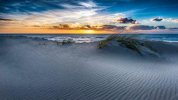 Dune Blick auf den niederländischen Strand von Alex Hiemstra