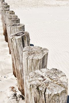 Strandpalen  van Wendy Bos