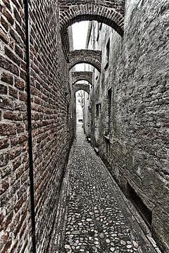 Steeg uit de Middeleeuwen in Deventer van Jelte Bosma