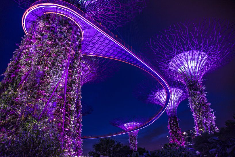 Singapore Marina Bay Gardens Skywalk by night van Yannick Karnas