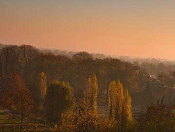 November kleuren op een mistige ochtend in Weert van JM de Jong-Jansen