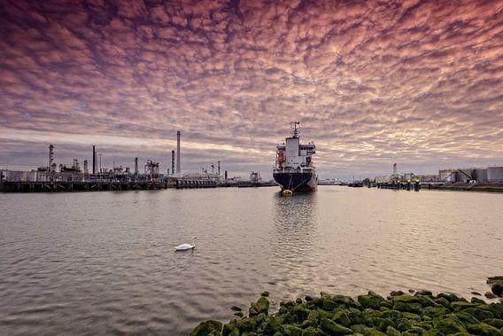 olieraffinaderij aan de Tweede Petroleumhaven in Rotterdam