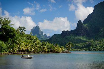 Vulkanlandschaft auf grünem Moorea von iPics Photography