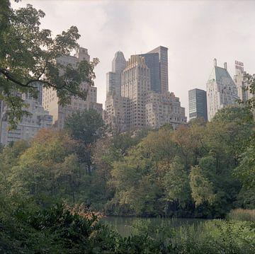 Cental Park Skyline von Maaike van Stratum