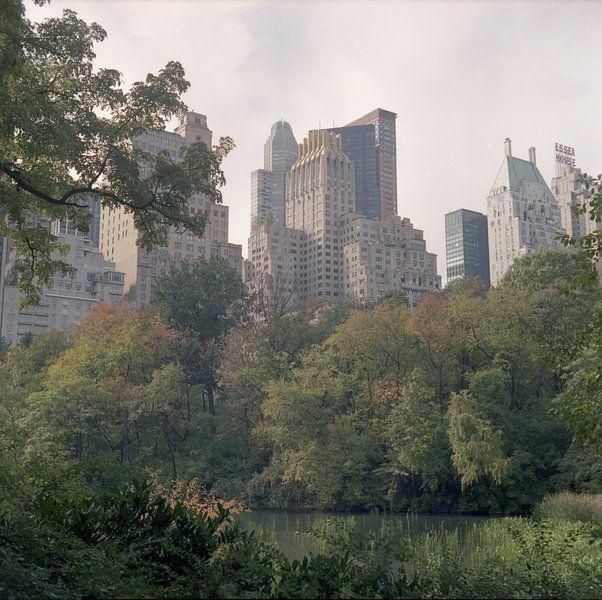 Central Park skyline van Maaike van Stratum