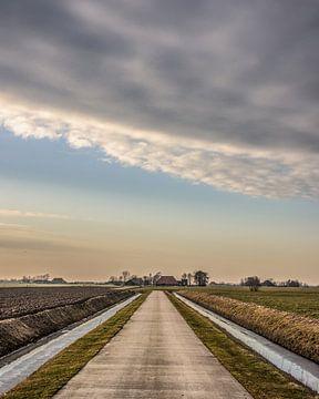 Het Friese landschap vlak ten noorden van Sneek van Harrie Muis