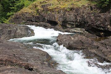 Elk Falls Vancouver Island van Elisabeth Eisbach