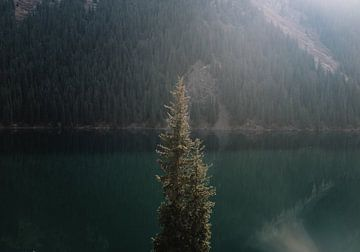 Kolsai-Bergsee mit grünen Nadelbäumen bei Almaty, Kasachstan von Robin Patijn