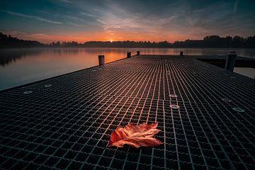 het blad op de steiger in de ochtend van Marc-Sven Kirsch