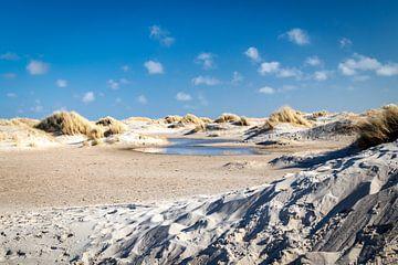 Duinlandschap Texel van Johan Pape