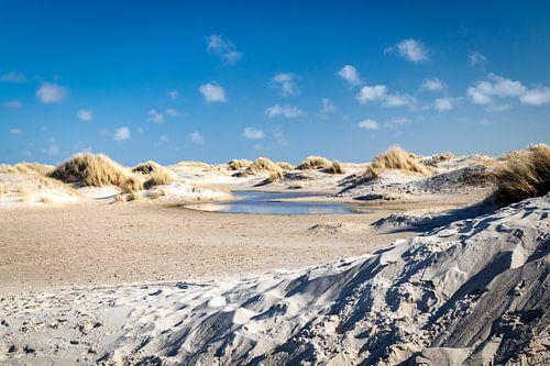 Duinlandschap Texel