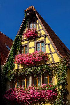 Bloemen in Rothenburg, Duitsland van Adelheid Smitt