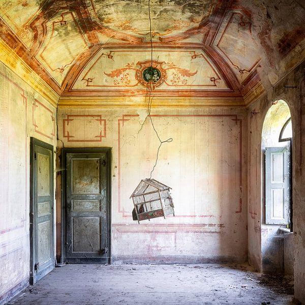 Verlaten Vogelkooi in Huis. van Roman Robroek